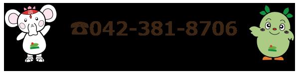 042-381-8706